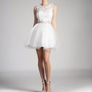 Scoop Neck Lace Bodice A-Line Dress CD0117